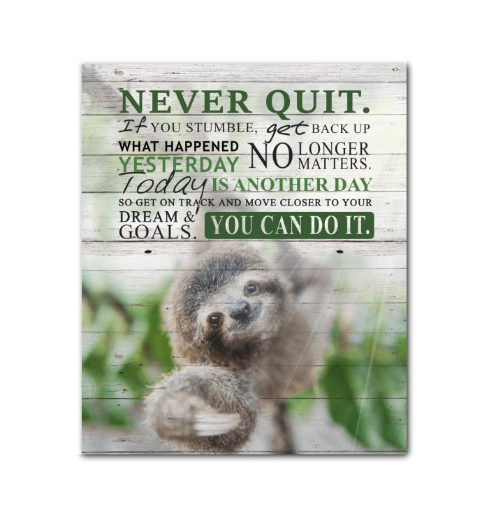 Canvas - Sloth - Never Quit